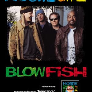 Hootie & The Blowfish CD Promo Poster
