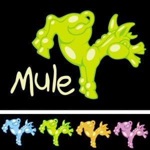 Gov't Mule Muleys 2008
