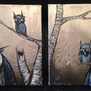 Owls 6 2014