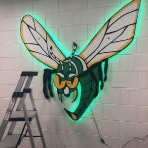 EHS Hornet LightUp