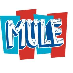 Gov't Mule Tour Art 2017